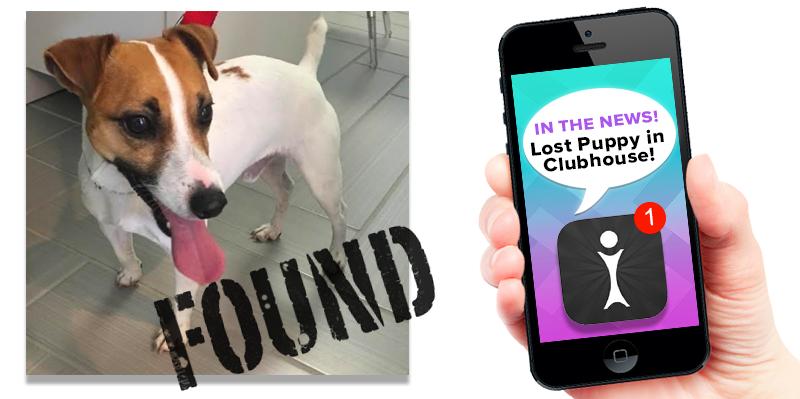 lost-puppy-newsletter